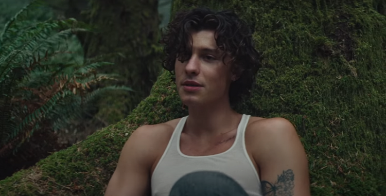 Shawn Mendes luta contra o ego em trailer de documentário; confira